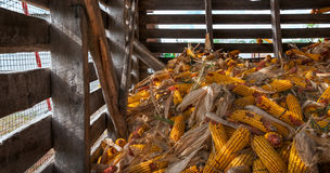 Corn Crib Pile Royalty Free Stock Photography