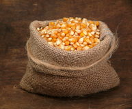 Corn crop Royalty Free Stock Photos