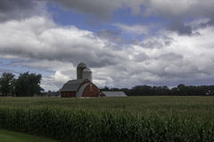 Corn Crop Beneath Summer Skies. A beautiful country scene beneath summer skies on a rural Wisconsin road passing by vast corn fields royalty free stock image