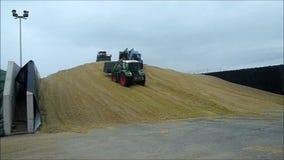 Corn crop biogas plant stock footage
