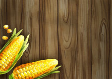 Corn on the dark table template Stock Photography