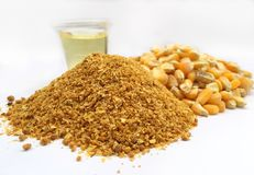Corn ddgs , distilling dried grain with soluble to produce bio diesel and alcohol / ethanol. Maize raw material for fuel ethanol ,ingredient,food,feed,poultry royalty free stock photo