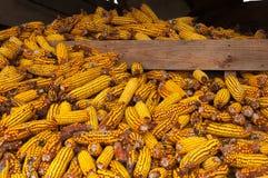 Corn deposit Stock Photo