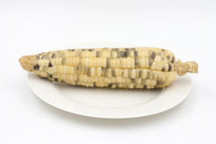 Corn on the dish Royalty Free Stock Images