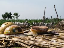 Nigerian corn drying in the summer Stock Image