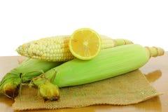 Corn ear with cut lemon Stock Image