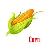 Corn ear vegetable plant icon Stock Image