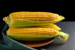 Corn ears on brown plate Royalty Free Stock Image