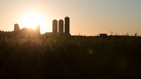 Corn Farm Barn and Sunrise Royalty Free Stock Photos