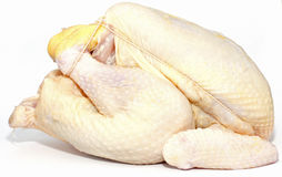 Corn-Fed Chicken. An organic free-range corn fed chicken that is ready for the oven Stock Images