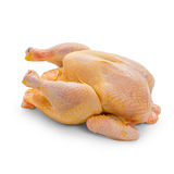 Corn-fed chicken on white background Stock Images