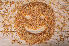 Corn. Few of corn pose a smiling face Royalty Free Stock Image