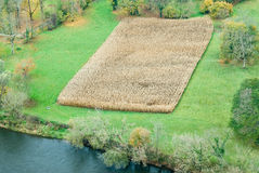 Corn field. In France, on Perigod Royalty Free Stock Photos