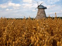 Corn field and alone mill in Europe. Corn field and alone mill in Lithuania. Europe Stock Photos