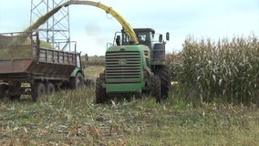 Corn field harvesting stock video