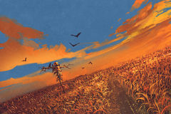 Corn field with scarecrow and sunset sky. Illustration painting Royalty Free Stock Photos