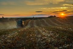 Corn field at sunset and harvester. Corn field at sunset with a combine harvester in the distance Royalty Free Stock Photography