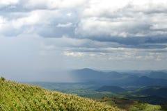 Corn field on top mountain with raining Stock Photo