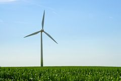 Corn field and wind turbine Royalty Free Stock Photography