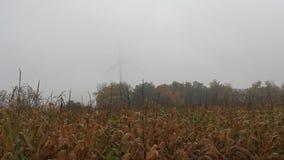 Corn Field Wind Turbine Fog 2 stock video