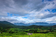 Corn fields, mountains and the sky. In northern Thailand Stock Photos