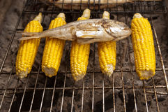 Corn and fish on bbq Stock Photo