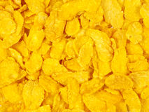 Corn flakes. Golden cereals detail abstract background stock image