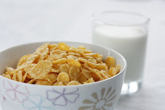 The Corn flakes. The Sound morning meal.The Loved flakes with milk Royalty Free Stock Photos