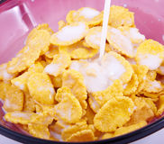 Free Corn-flakes Stock Image - 15397831