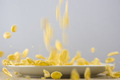 Corn Flakes. Thr Corn flakes fly away Stock Image