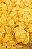Corn flakes as background Royalty Free Stock Photography