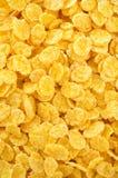 Corn flakes as background Stock Photos