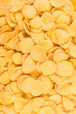 Corn flakes background Stock Photography