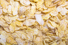 Corn flakes background Stock Images