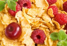 Corn flakes with berries Stock Photography