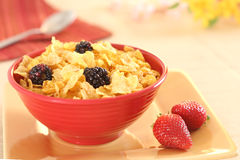 Corn flakes with berries. Photo showing morning breakfast of cornflakes and berries Royalty Free Stock Photography