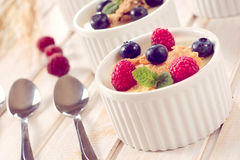 Corn flakes and berry fruit Stock Image