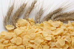 Corn flakes and cereal Stock Photography