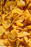 Corn flakes cereal close up shot Stock Photography