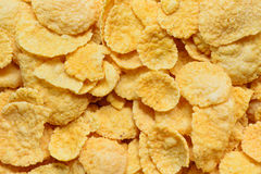 Corn flakes close up Royalty Free Stock Image