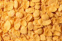 Corn - flakes Stock Images