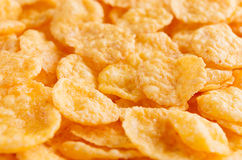 Corn flakes closeup background. Cereals texture. Stock Photography
