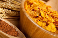 Corn flakes, cocoa and wheat Stock Images