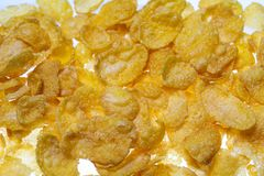 Corn flakes. Isolated on white stock photography