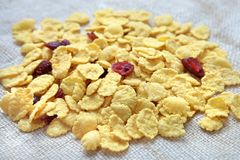 Corn-flakes with cranberries Royalty Free Stock Image