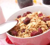 Corn flakes with cranberries Stock Photo
