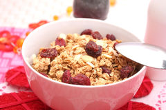 Corn flakes with cranberries Royalty Free Stock Image