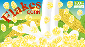 Corn flakes. Design for box. Milk pouring. Label for cereal pack. Age. Background field, sky and sun. Vector illustration Stock Photo