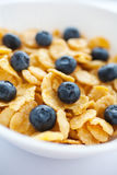 Corn flakes with fresh bilberry Royalty Free Stock Photography