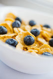 Corn flakes with fresh bilberry Royalty Free Stock Images